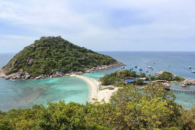 isla, snorkel, cerca de koh tao