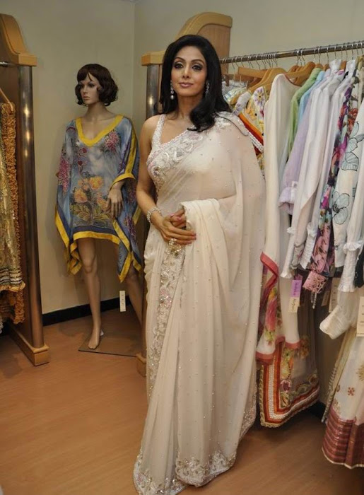 sridevi kapoor in transparent saree photo gallery