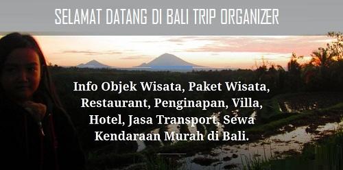 Selamat Datang di Bali Trip Organizer