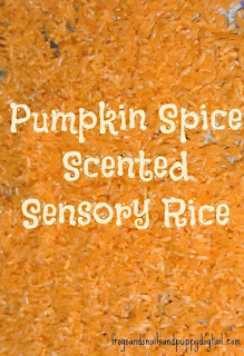 http://frogsandsnailsandpuppydogtail.com/pumpkin-spice-sensory-rice-recipe/