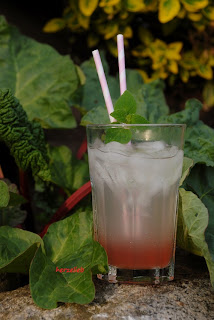 Mineralwasser mit Rhabarbersirup. Im Hintergrund die Rhabarberpflanze