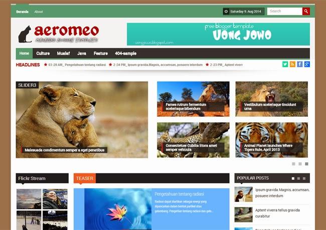 Aeromeo Mag