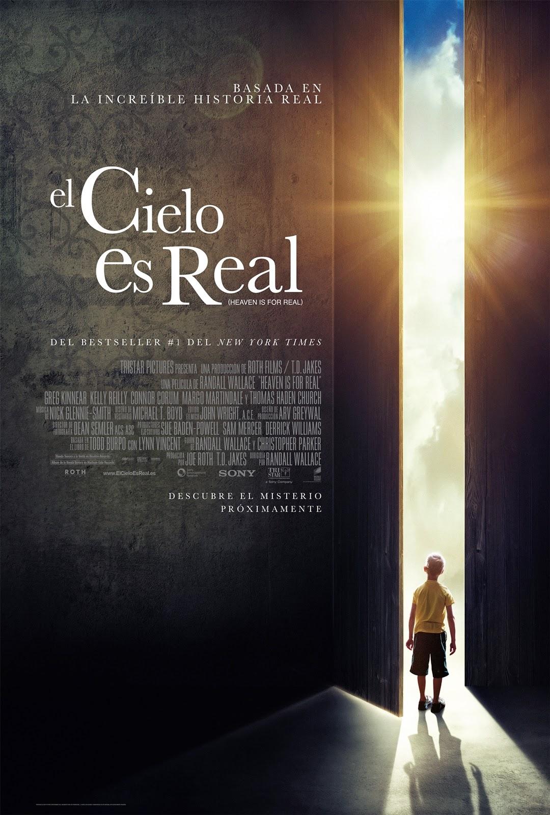 El Cielo Si Existe 2014 [DvDRipAudioLatino][Drama]