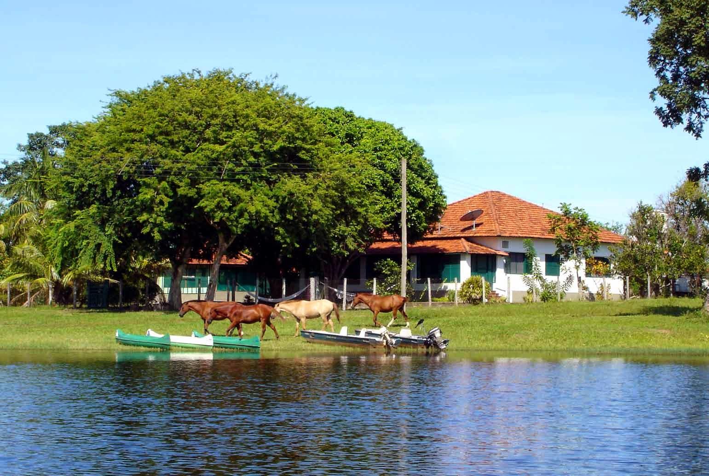Pantanal Barra Mansa