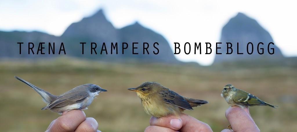 træna trampers bombeblogg