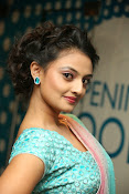 Nikitha Narayan latest glam pics-thumbnail-12