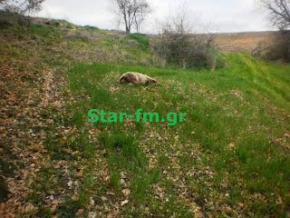 http://1.bp.blogspot.com/-KyAeBXwKP-E/UVRX8HA_FDI/AAAAAAABy7Y/BePdO62XPJM/s1600/P3284454.JPG
