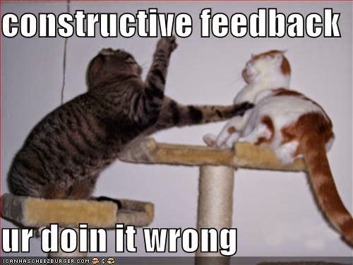 a humorous picture of a cat swatting at another cat with the caption constructive criticism you're not doing it right