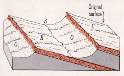 Gambar penampang jenis genetika sungai; C (konsekuen), S (subsekuen