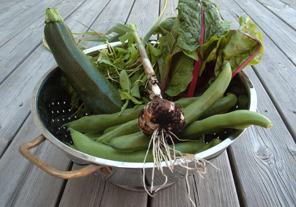 Grönsaker i ett durkslag