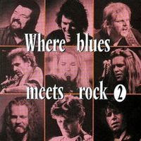 where blues meets rock vol. 2