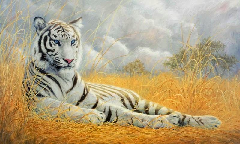 pinturas-hiperrealistas-de-tigres-oleos