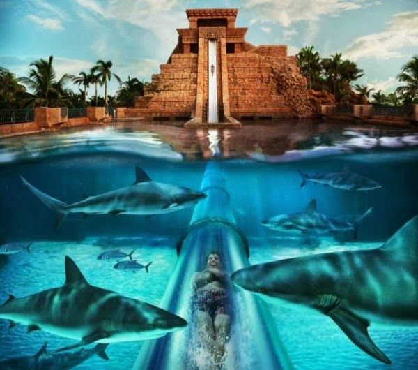 Aquaventure, Paradise Island Resort de las Bahamas