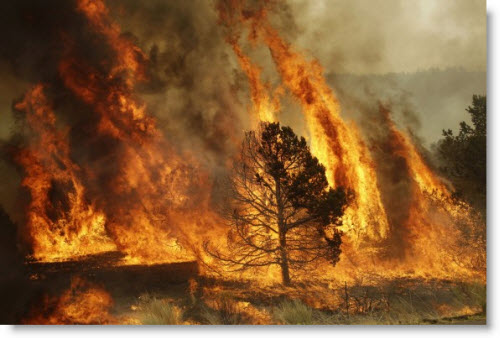 http://www.frugal-cafe.com/public_html/frugal-blog/frugal-cafe-blogzone/wp-content/uploads/2011/06/wallow-fire-arizona.jpg