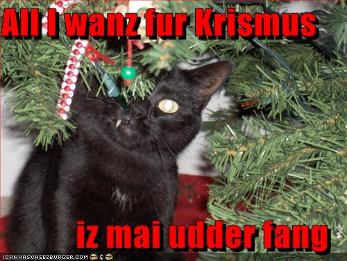 http://1.bp.blogspot.com/-KzfSDzYMCvY/Thz4hG0evJI/AAAAAAAAEjg/LXV3CWlW6MM/s1600/funny-pictures-all-cat-wants-for-christmas-is-his-other-fang.jpg