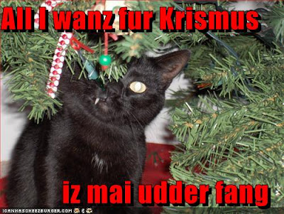 Funny Animals: Funny Christmas Animals