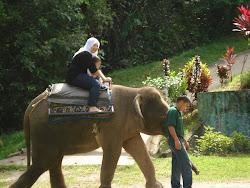 Lokawi Wildpark