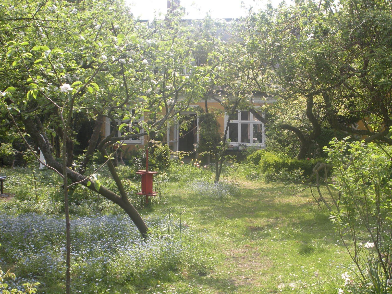 Garden by jennie: lotte möllers trädgård