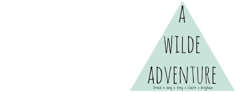 a wilde adventure