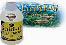 obat herbal untuk jantung bocor