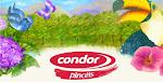 Condor Pincéis