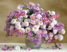 Para alegrar seu dia...
