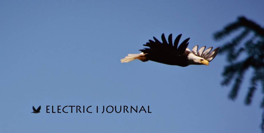 Electric | Journal