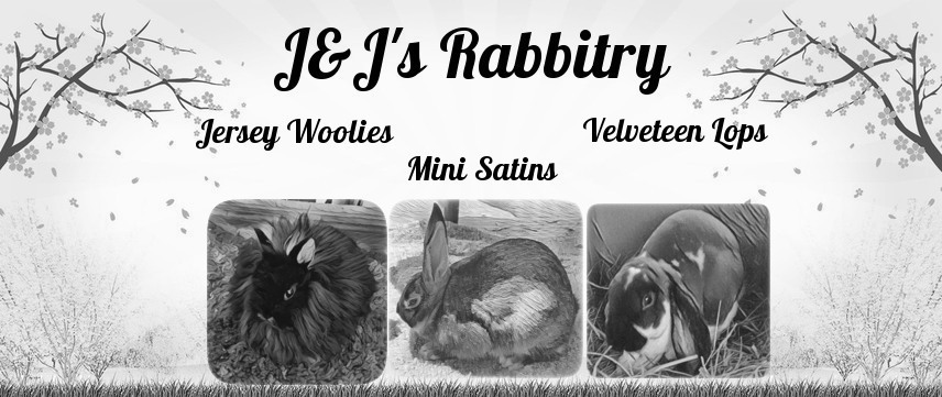 J&J's Rabbitry