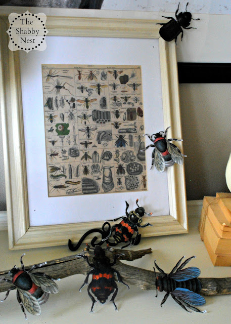 Insect Halloween Mantel by The Shabby Nest