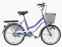 City Bike Wimcycle Mini Nexia 20 Inci