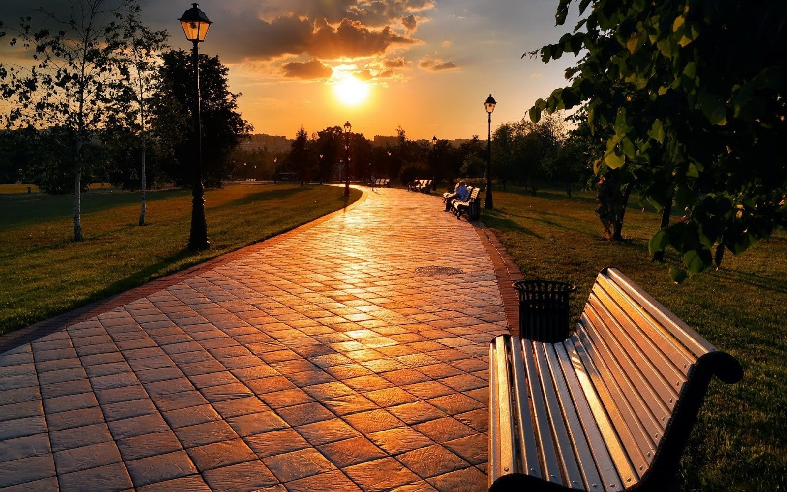 Sunset Park Benches