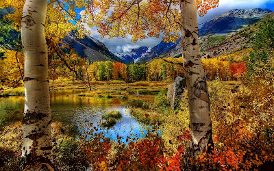 Paisaje bonito (Fondo para tu computadora de 1920x1200px)- Hermosa vista del otoño- Autumn