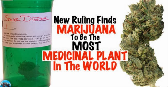 Still Believe Nature Got It Wrong? Top 10 Health Benefits of Marijuana