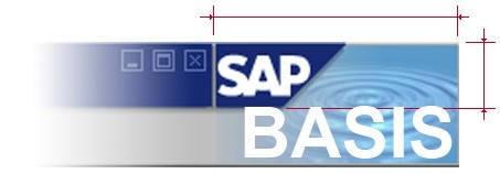 Consultor SAP Basis