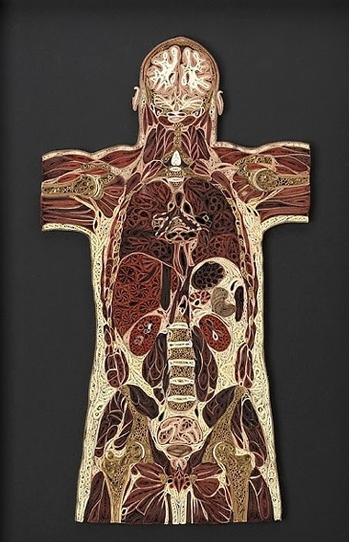 01-Quilling-Anatomy-Lisa-Nilsson-Old-Books-Medical-Assistant-www-designstack-co