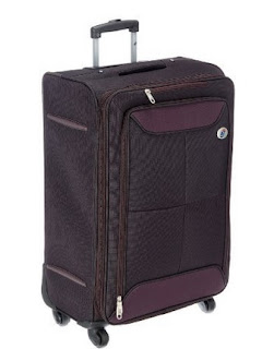 American Tourister Konnect Polyester Purple Soft Sided Suitcase