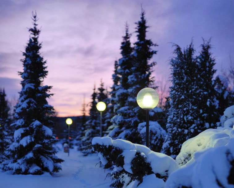 nature-winter-snow-night-lights-hd-image