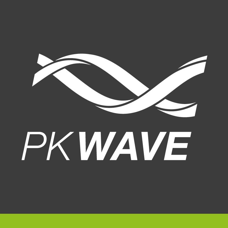 ParkourWave Website