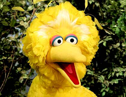 Most Popular Sesame Street Character Big Bird