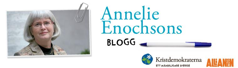 Annelie Enochson Riksdagen