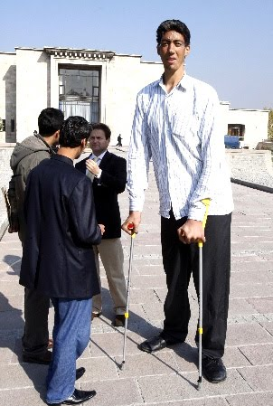 rose blog the tallest people all over the world
