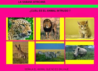 http://chiscos.net/almacen/lim/la_sabana_africana4/lim.swf?libro=la_sabana_africana.lim