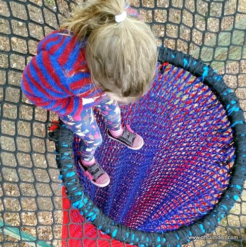 Treetop net slides Brockhole