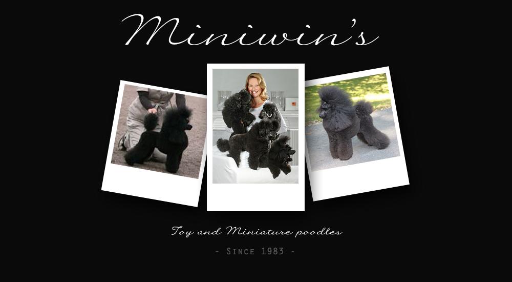 Miniwin's