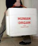 Lega Nazionale Contro la Predazione di Organi e la Morte a Cuore Battente
