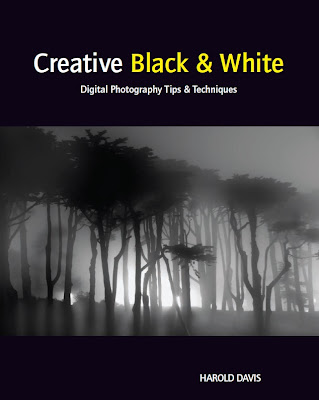 Creative Black and White: Digital Photography Tips and Techniques - Free Ebook Download
