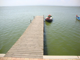 Lonely Boat in a big dock - El Saler - Valencia