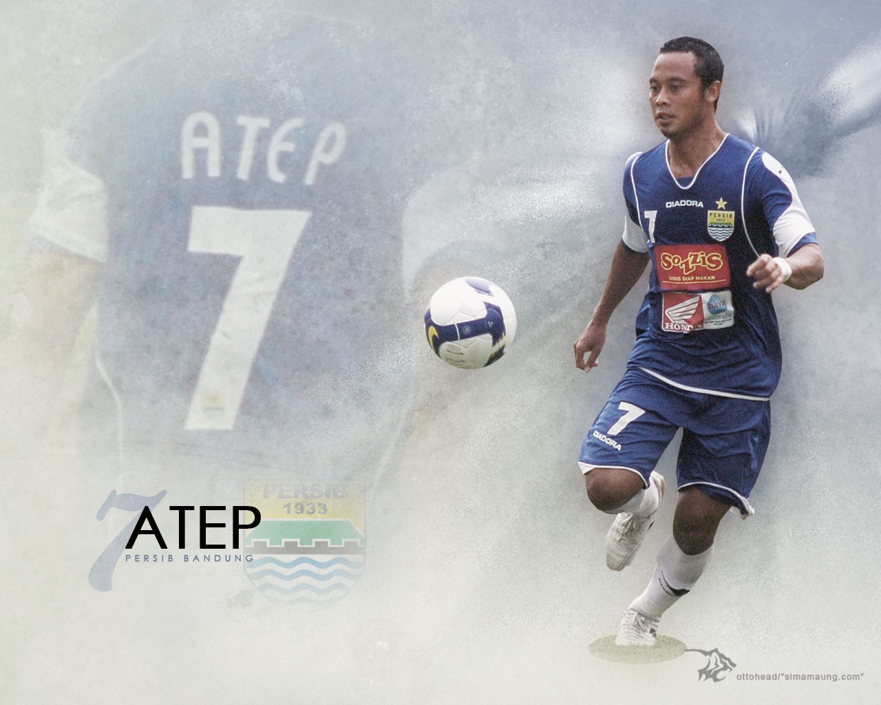 wallpaper persib the blue tiger