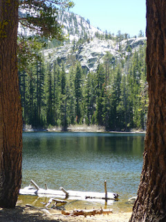 Lake Genevieve, a greenish, shallow lake in the Desolation Wilderness, California
