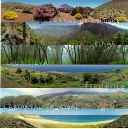 Conociendo nuestro m xico regiones naturales - El tiempo en macanet de la selva ...